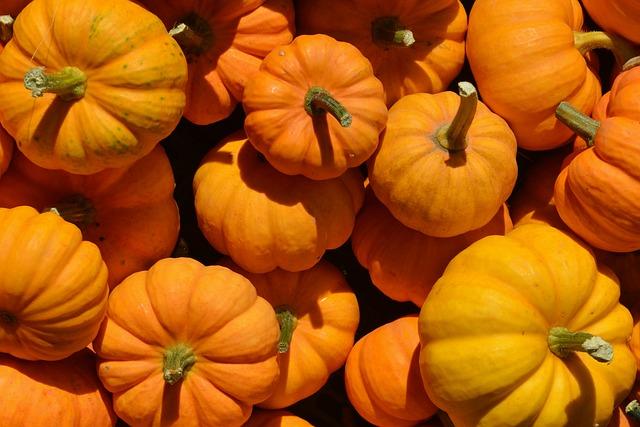 pumpkin-1004377_640