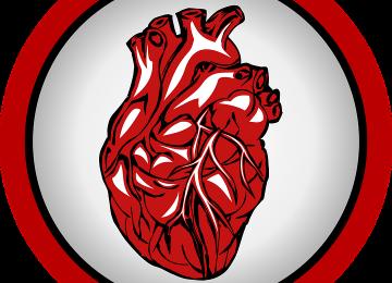 4 Hal yang Wajib Kamu Waspadai demi Jantung Sehat