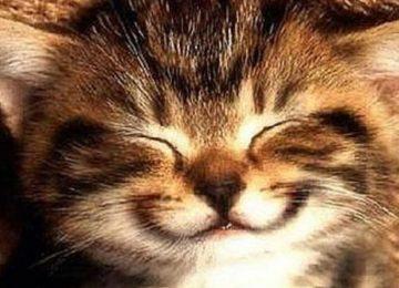 5 Manfaat Senyum yang Penting Buatmu