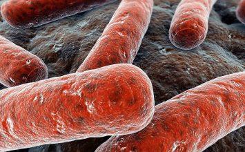 6 Hal tentang TB alias Tuberkulosis yang Wajib Kau Pahami
