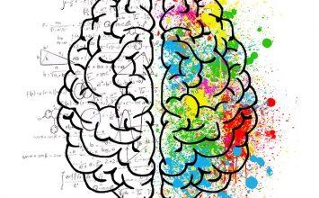 Mau Jaga Kesehatan Otak? Hindari Makanan Ini!