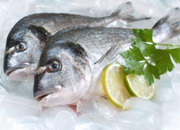 Suka Makan Ikan? Yuk, Pelajari Cara Menyimpan Ikan yang Benar Di Sini!