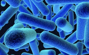 Infeksi Listeria dan Penyebarannya yang Mendunia