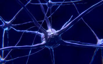 Manfaat Puasa Bagi Otak