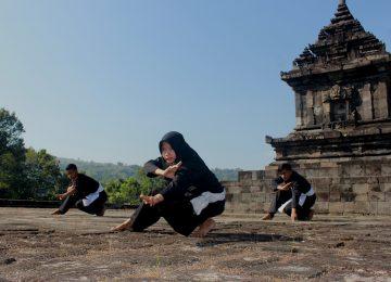 Pencak Silat, Beladiri dan Budaya