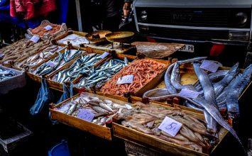 Selamat Hari Ikan Nasional!