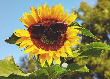 Apa ya, Kaitannya Sinar UV dan Kanker Kulit?