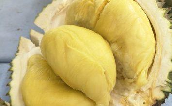 Apakah Mengonsumsi Durian bisa Meningkatkan Kolesterol?