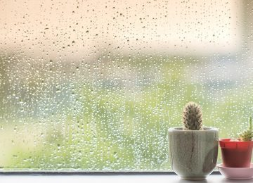 Bosan di Rumah saat Musim Hujan? Coba Lakukan Aktivitas Ini Yuk!