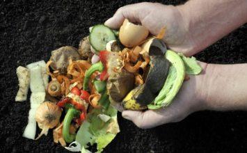 Manfaatkan Sisa Sayuranmu dengan Cara ini Yuk!