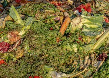 Kurangi Food Waste dan Sukseskan SDG 12.3
